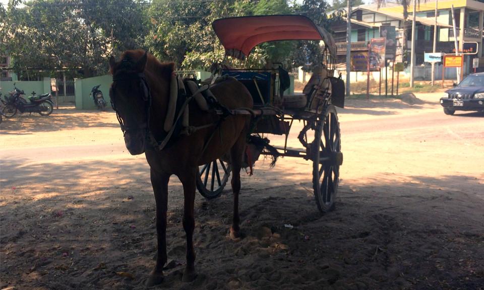 horse-cart-myanmar