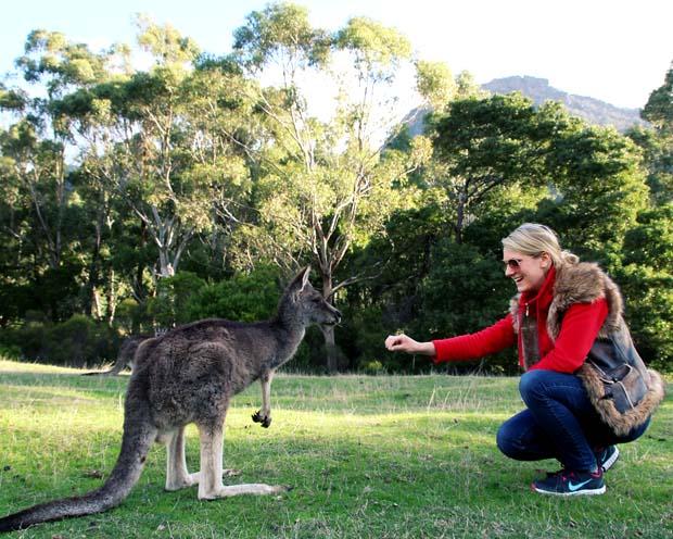fleece jacket pack australia