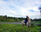 Muriwai Horse Treks